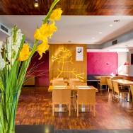 Interiérové prvky v Hotel Restaurant Darwin